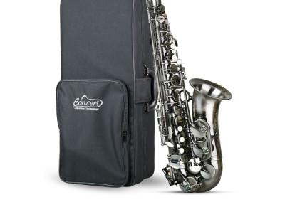 Concert Alto CAS980